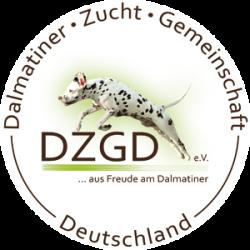 Dalmatiner von der Ambacher Höhe
